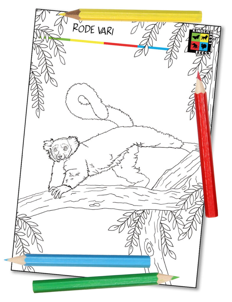 Kleurplaat Lemuren